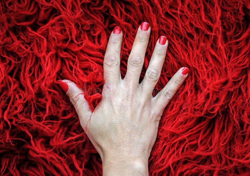 czerwone zdjęcie stock