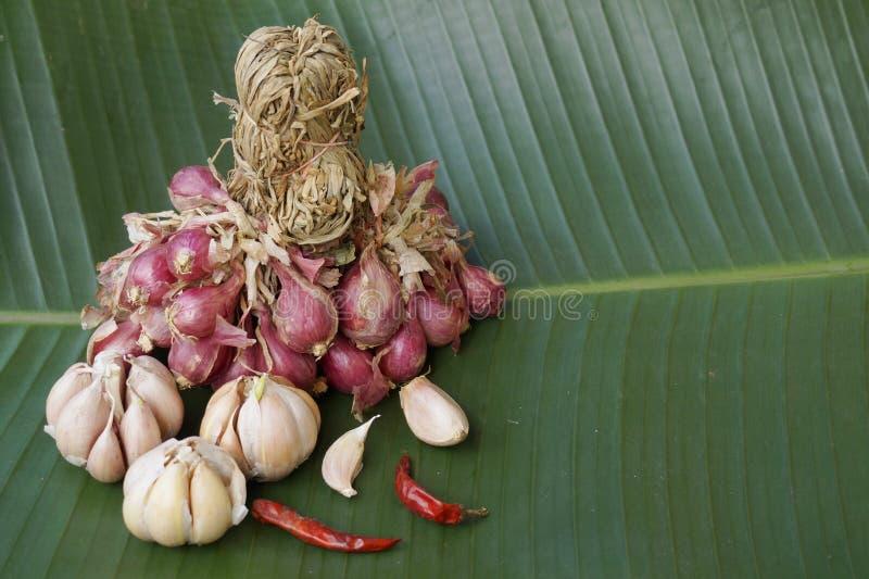 Czerwone cebule, czosnek, chłodny składnika thaifood fotografia royalty free