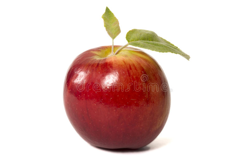 czerwone jabłko odizolowana zdjęcie royalty free