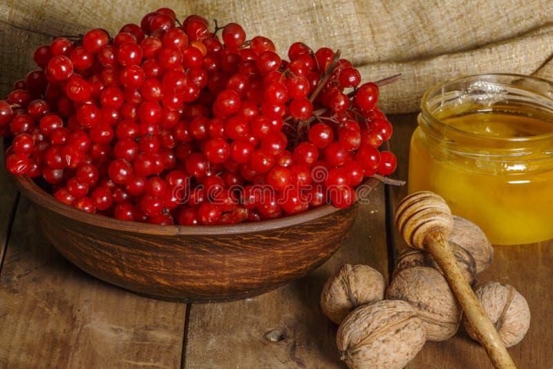 Czerwone jagody viburnum z miodem i dokrętkami na drewnianym stole Selekcyjna ostrość fotografia stock