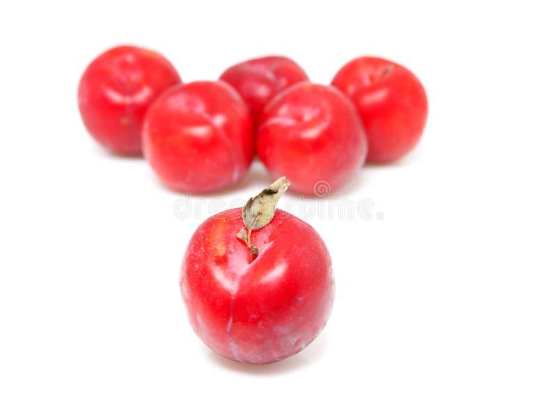 czerwone par śliwki obrazy royalty free
