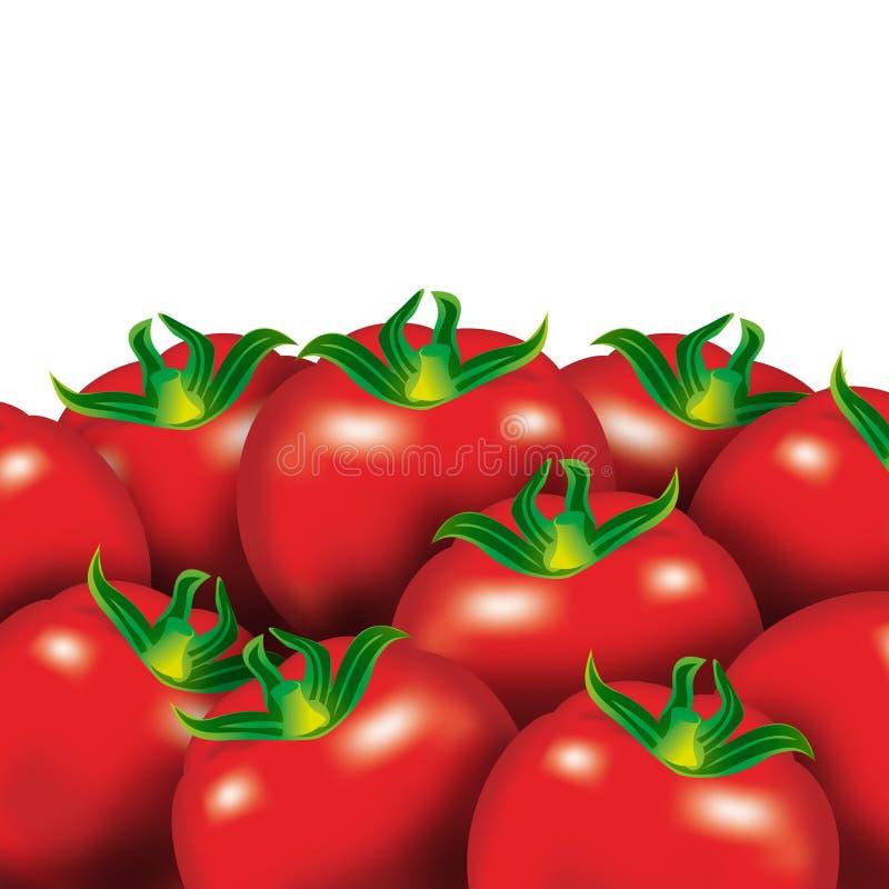 czerwone pomidorów royalty ilustracja