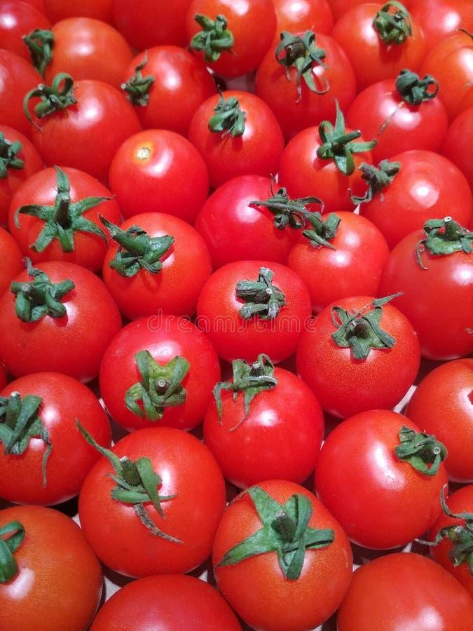Czerwone pomidory z zielonym ogonkiem zdjęcia royalty free