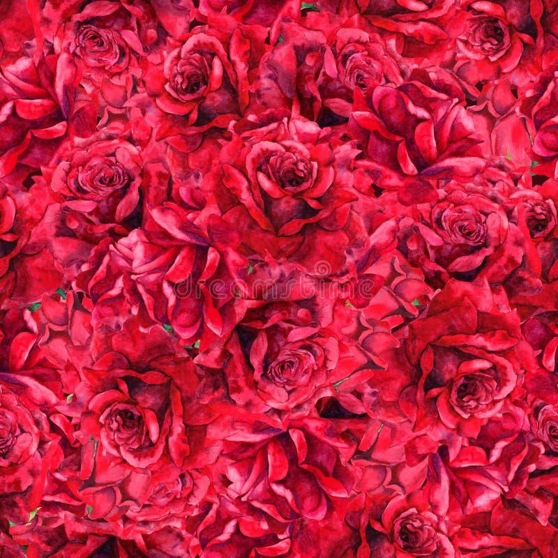 czerwone róże, bezszwowy kwiecisty wzoru akwarela zdjęcie stock