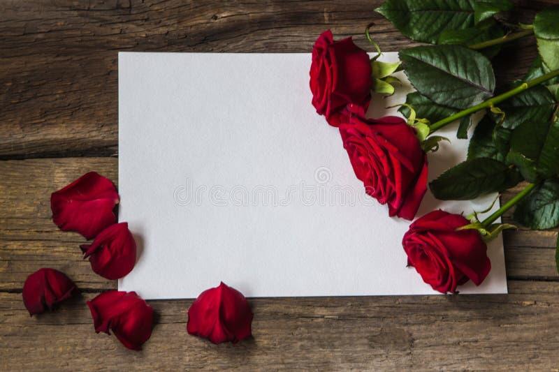 Czerwone róże kwitną i płatki na pustym kawałku papieru zdjęcie stock