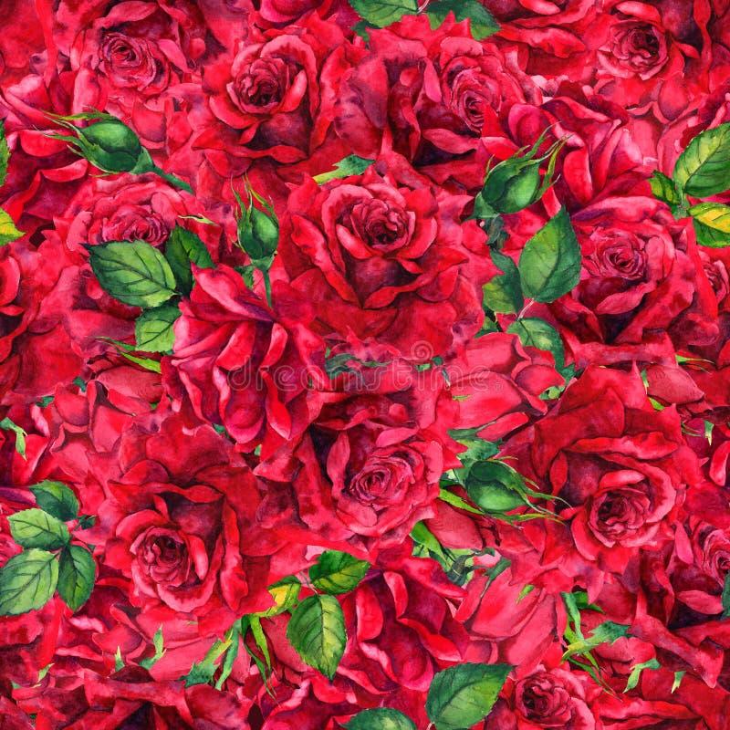 Czerwone róże kwitną z pączkami, liście bezszwowy kwiecisty wzoru akwarela ilustracji