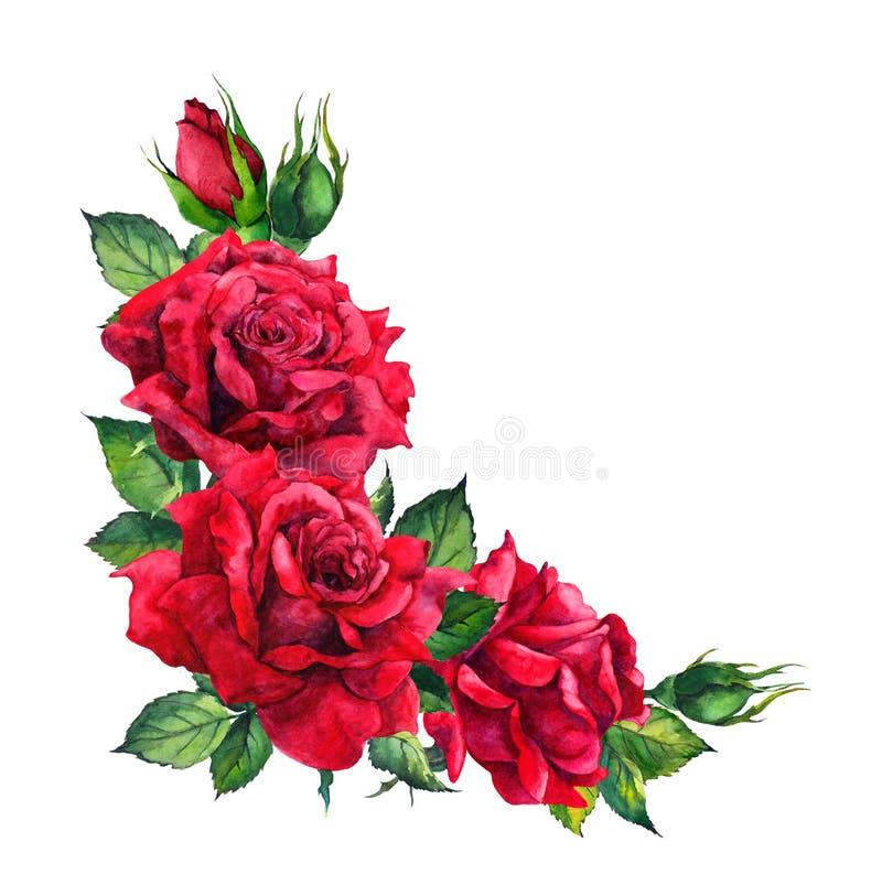 Czerwone róże - narożnikowy kwiecisty skład Akwarela dla ślubnej karty ilustracji