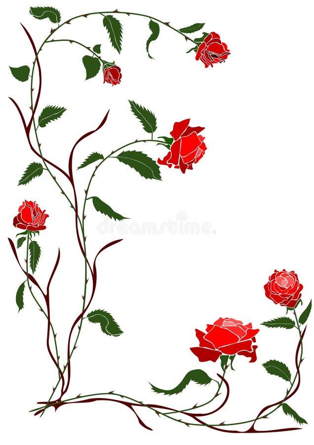 czerwone róże winorośli royalty ilustracja
