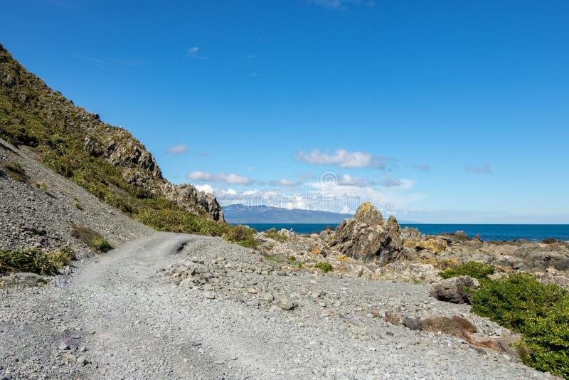 Czerwone skały wybrzeże, Wellington Nowa Zelandia obraz stock