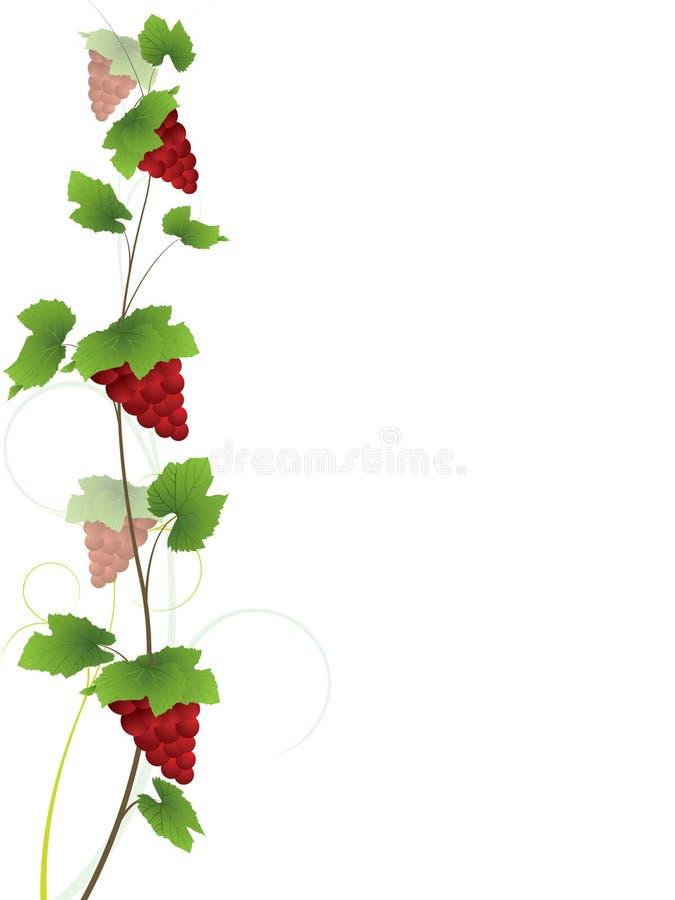 czerwone tło winogron winorośli royalty ilustracja