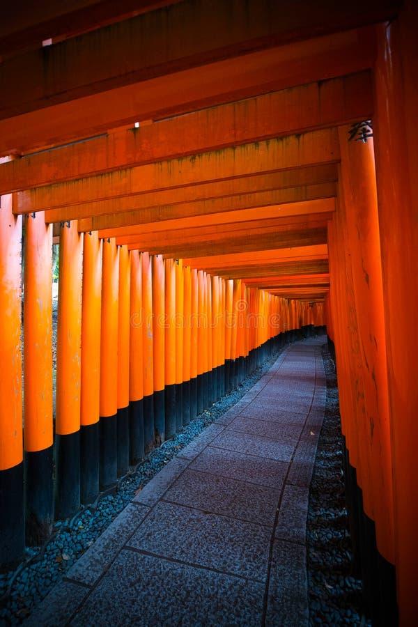 Czerwone torii bramy przy Fushimi Inari świątynią w Kyoto, Japonia zdjęcie royalty free