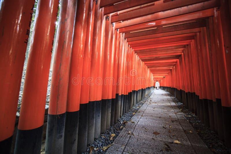 Czerwone torii bramy sławna punktu zwrotnego Fushimi Inari świątynia, południe Kyoto, Japonia fotografia royalty free