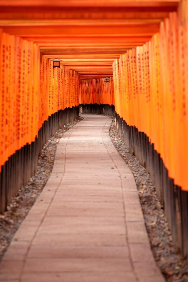 Czerwone Torii bramy w Fushimi Inari ?wi?tyni obrazy stock