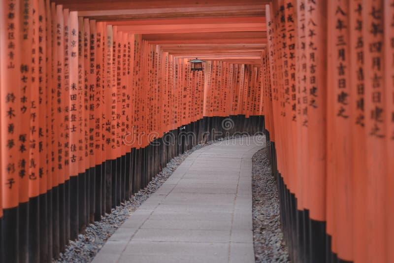 Czerwone Torii bramy w Fushimi Inari ?wi?tyni w Kyoto, Japonia zdjęcie royalty free