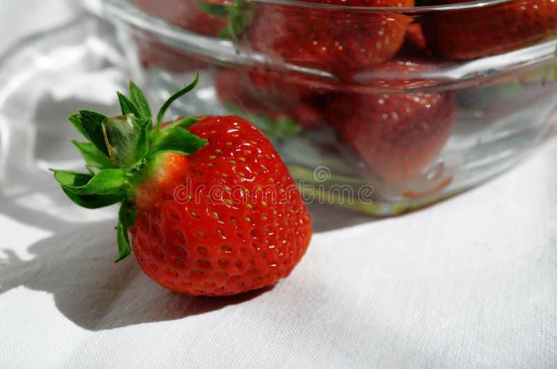Czerwone truskawkowe jagody w szklanym sałatkowym pucharze na białym tle obrazy royalty free
