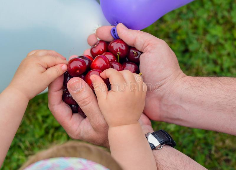Czerwone wiśnie w ręce ręki dziecko w ogródzie i mężczyzna obrazy stock