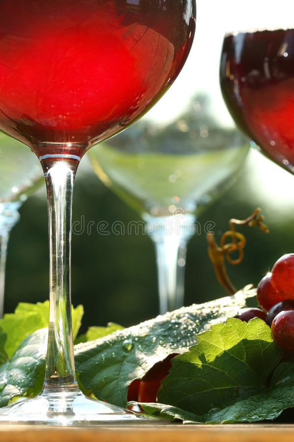 czerwone wino jarzeniowy fotografia stock
