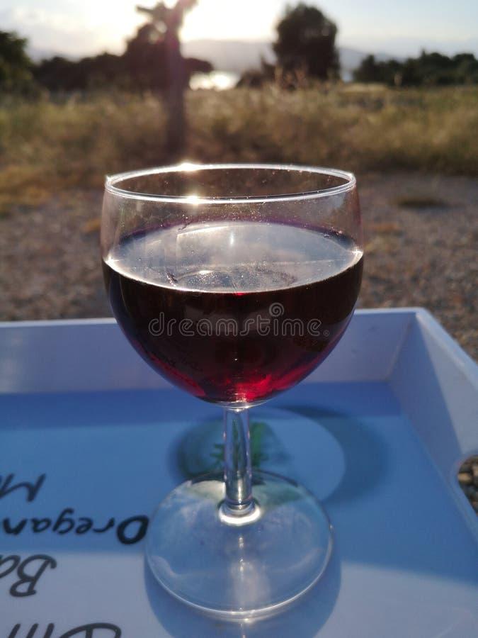 czerwone wino szk?a obrazy royalty free