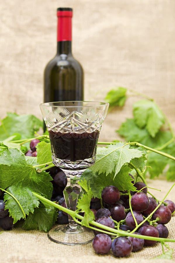 Czerwone wino w wina szkle z słodkimi winogronami. obraz royalty free