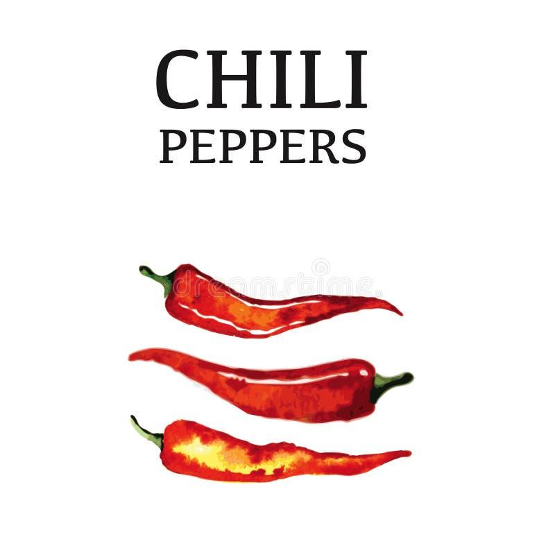 Czerwonego chili pieprzu odosobniony plakat na bielu ilustracja wektor