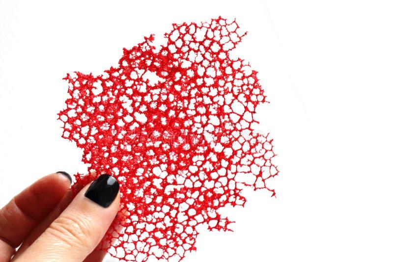 Czerwonego korala krepy koronki karmowa dekoracja w r?ce zdjęcia stock