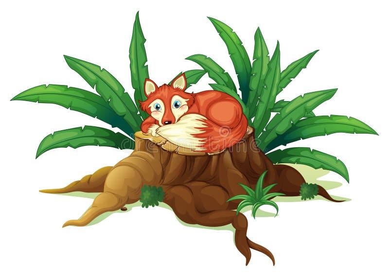Czerwonego lisa lying on the beach nad drewno ilustracji