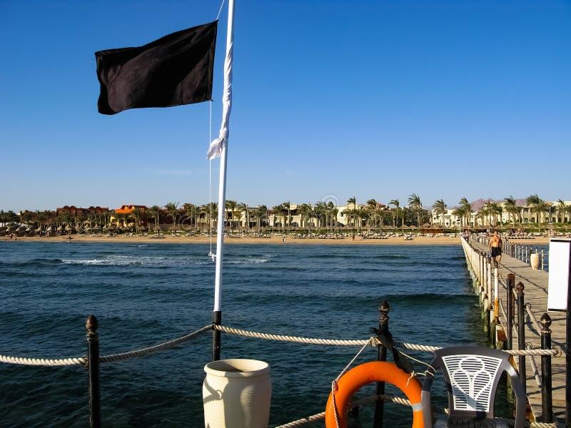 Czerwonego morza linia brzegowa w sharm el sheikh, Egipt, Synaj obrazy royalty free