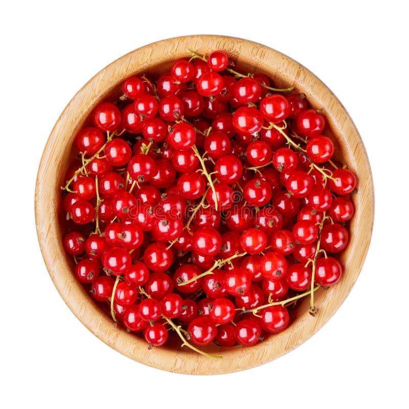 Czerwonego rodzynku jagody w drewnianym pucharze odizolowywaj?cym na bia?ym tle Odg?rny widok obrazy royalty free