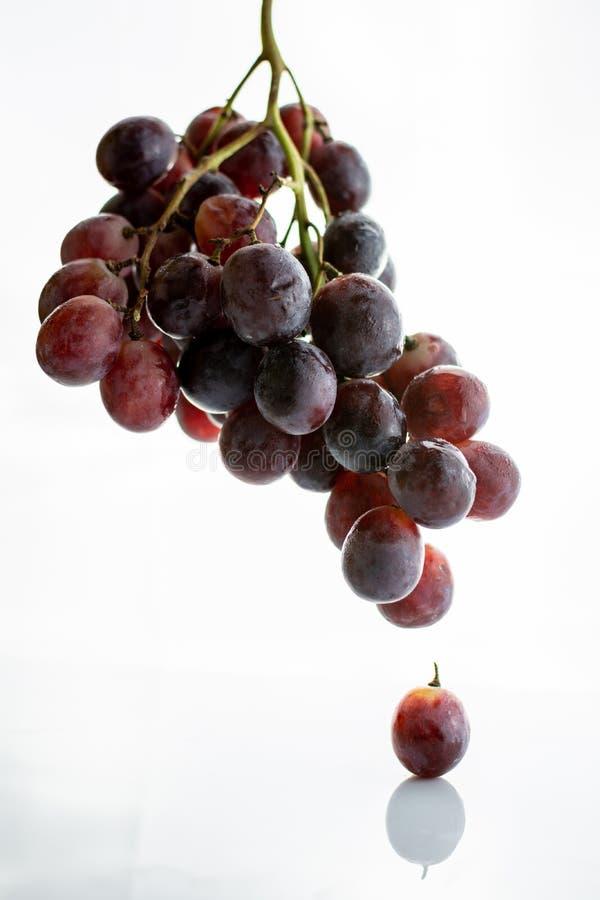 Czerwonego winogrona grono odizolowywający na białym tle obraz royalty free