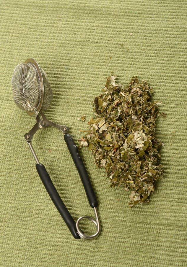 Czerwonej malinki liścia herbata obraz royalty free