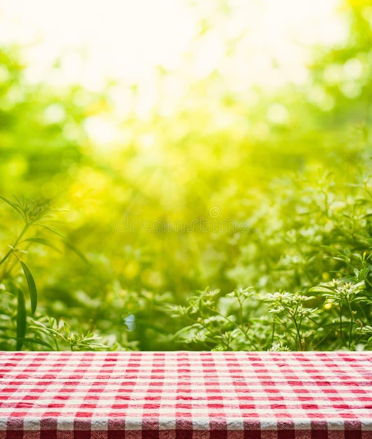 Czerwonej w kratkę tablecloth tekstury odgórny widok z abstrakt zieleni ogródem zdjęcia stock