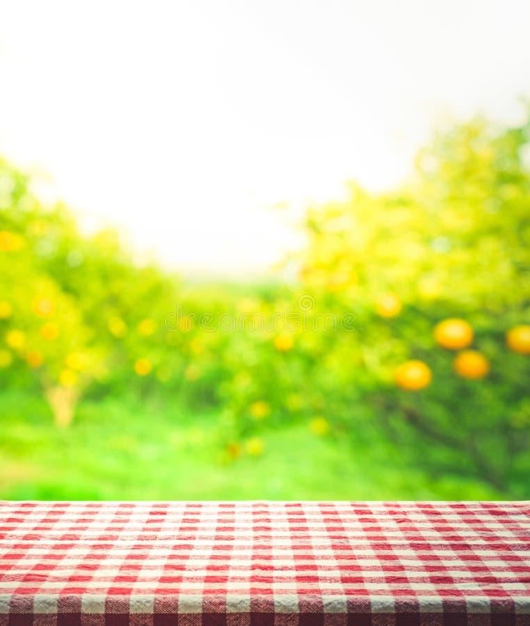 Czerwonej w kratkę tablecloth tekstury odgórny widok z pomarańcze ogródem fotografia royalty free