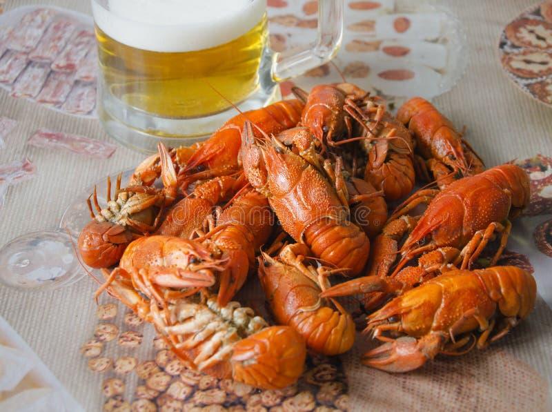 Czerwoni apetyczni raki z piwem na zamazanym tle zdjęcia stock