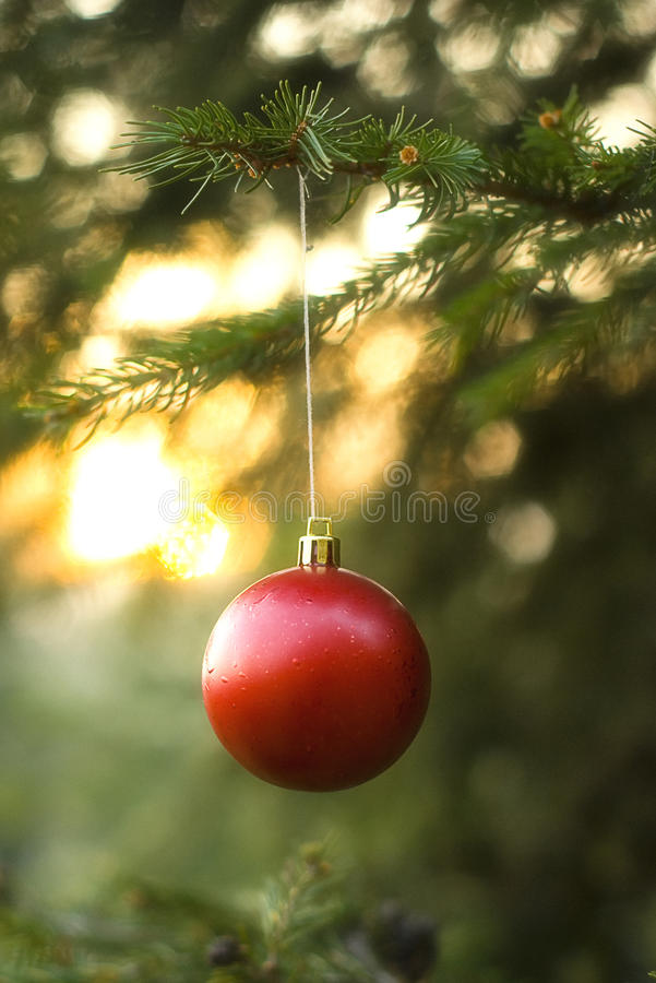 czerwoni balowi boże narodzenia zdjęcie stock