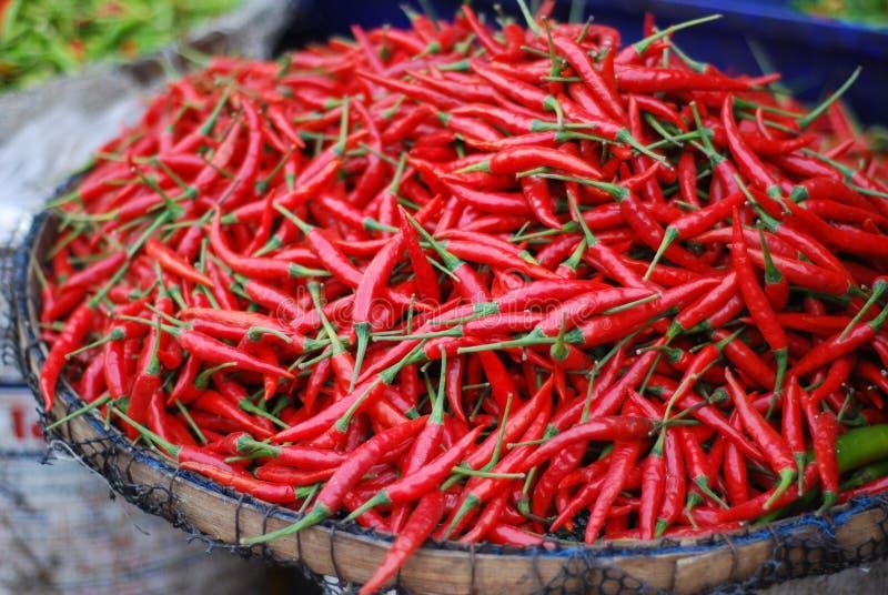 czerwoni chłodni gorący pieprze zdjęcia royalty free