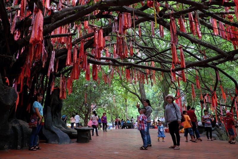 Czerwoni faborki na miłości drzewie zdjęcie royalty free