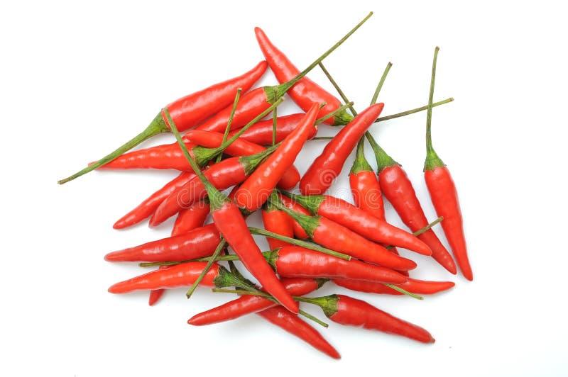czerwoni gorący chili pieprze zdjęcie stock
