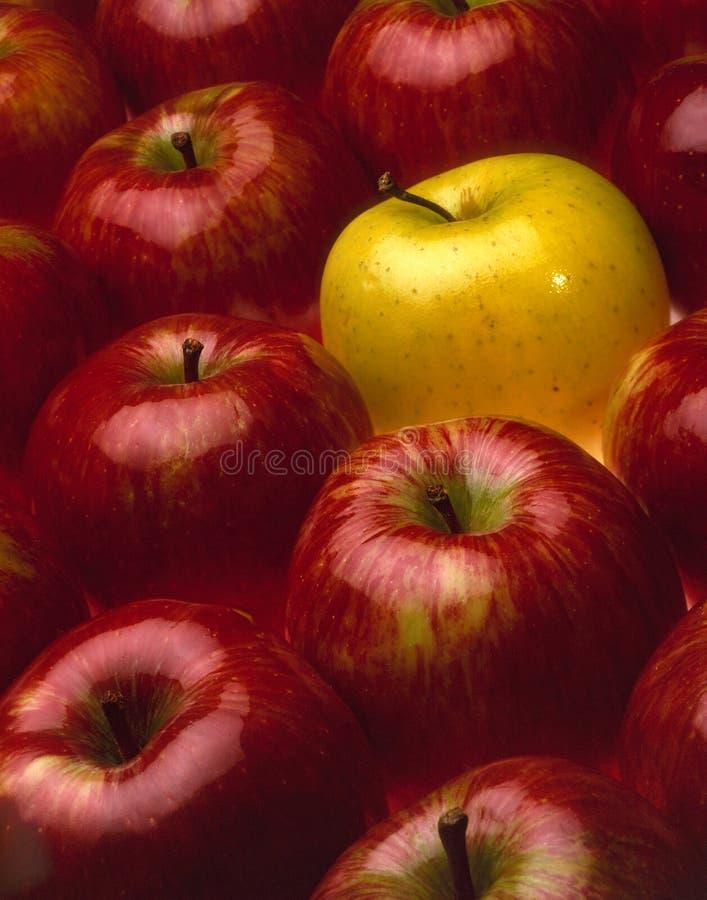 Czerwoni i żółci jabłka zdjęcia stock