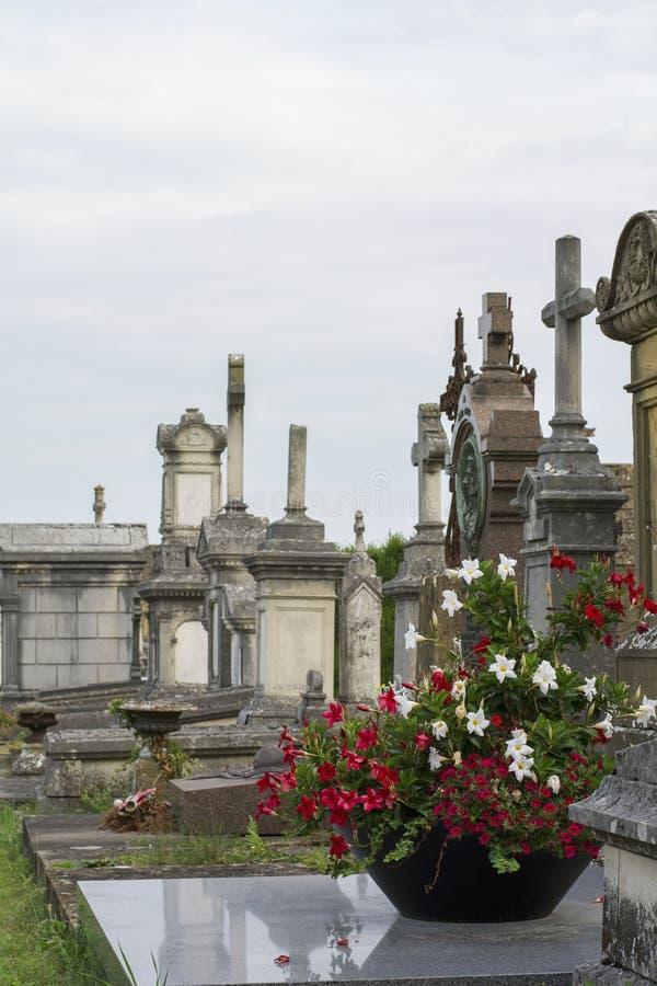 Czerwoni i biali kwiaty na antycznym francuskim cmentarzu z zdjęcie royalty free