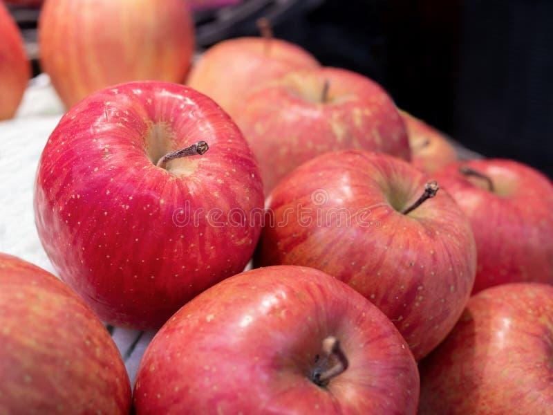 Czerwoni jabłka z kocowaniem zdjęcie royalty free