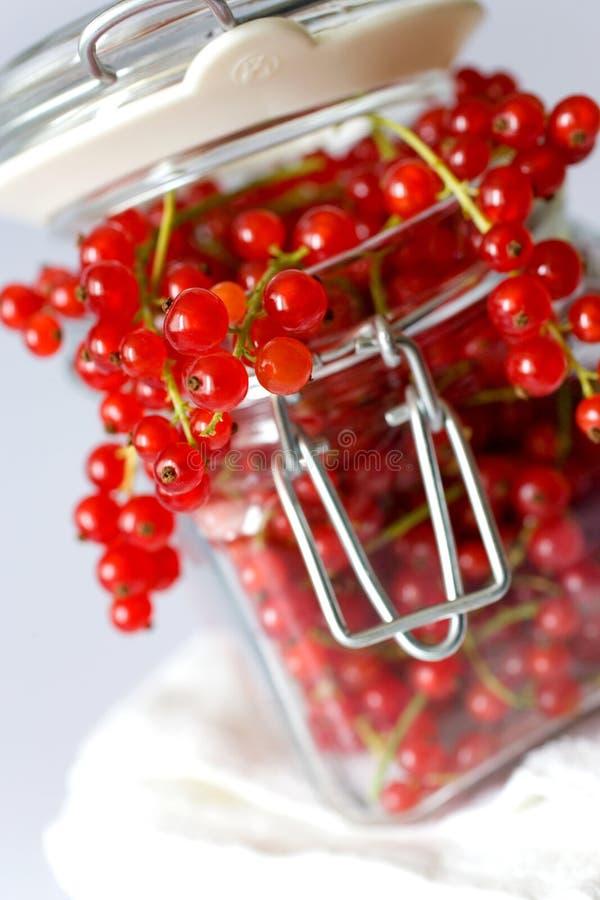 czerwoni jagoda rodzynki obraz royalty free