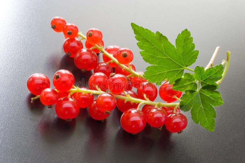 czerwoni jagoda rodzynki obraz stock