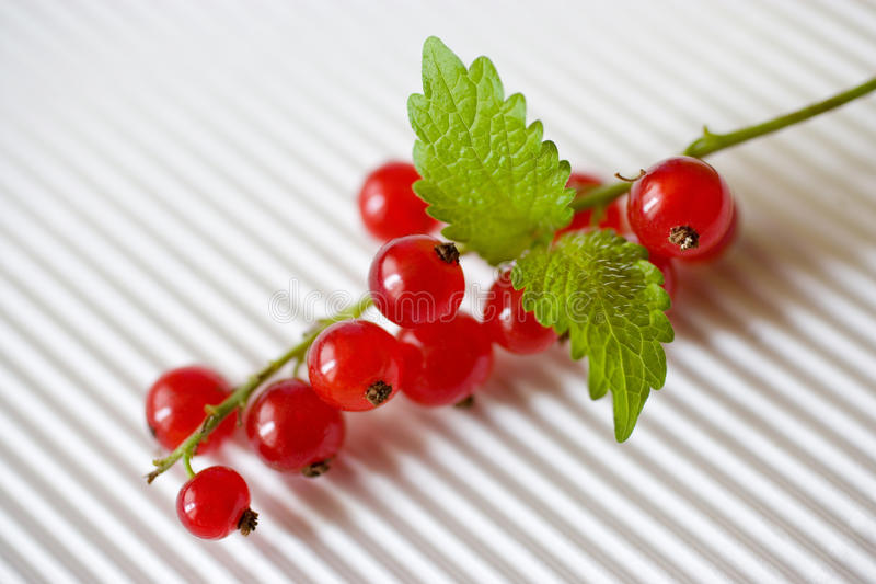 czerwoni jagoda rodzynki fotografia royalty free