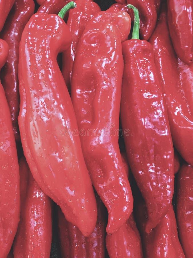 Czerwoni pieprze z wodnymi kroplami obraz stock