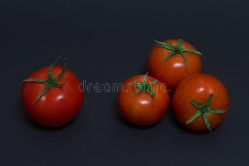 Czerwoni pomidory na ciemnym tle Cztery czerwonego pomidoru na ciemnym tle zdjęcia stock