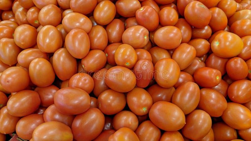 Czerwoni pomidory w masie ilustracja wektor