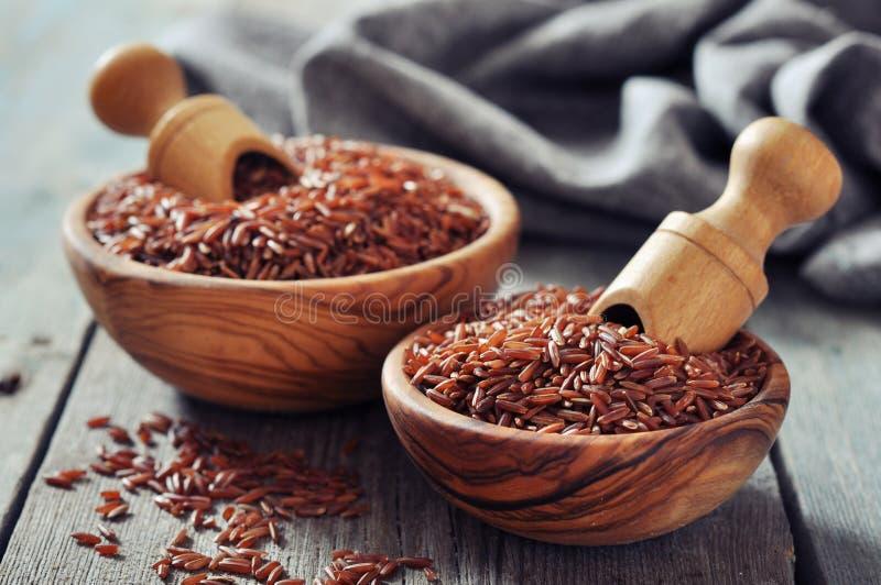 Czerwoni ryż fotografia royalty free