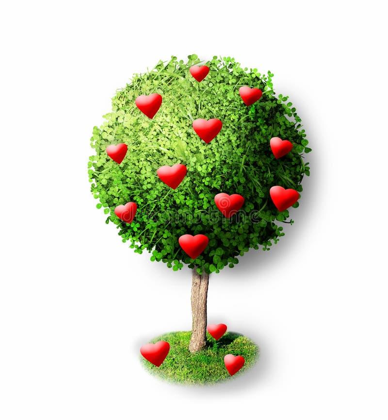 Czerwoni serca na zielonym drzewie fotografia stock