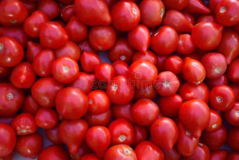 Czerwoni soczyści pomidory w rynku Wiele czerwoni świezi pomidory obrazy stock