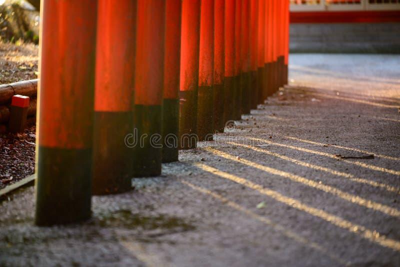 Czerwoni Torri bramy słupy w wieczór słońcu, Nobeoka, Japonia zdjęcie royalty free
